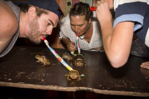 Cane Toad Racing @ The Ironbar @ The Ironbar | Port Douglas | Queensland | Australia