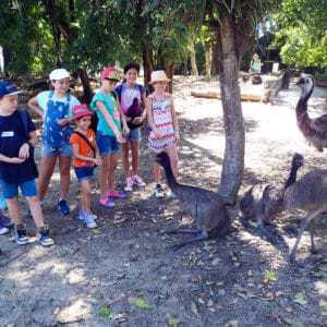 Wildlife Habitat Junior Keepers School Holiday Program @ Wildlife Habitat Port Douglas | Port Douglas | Queensland | Australia
