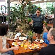 wildlife habitat breakfast new