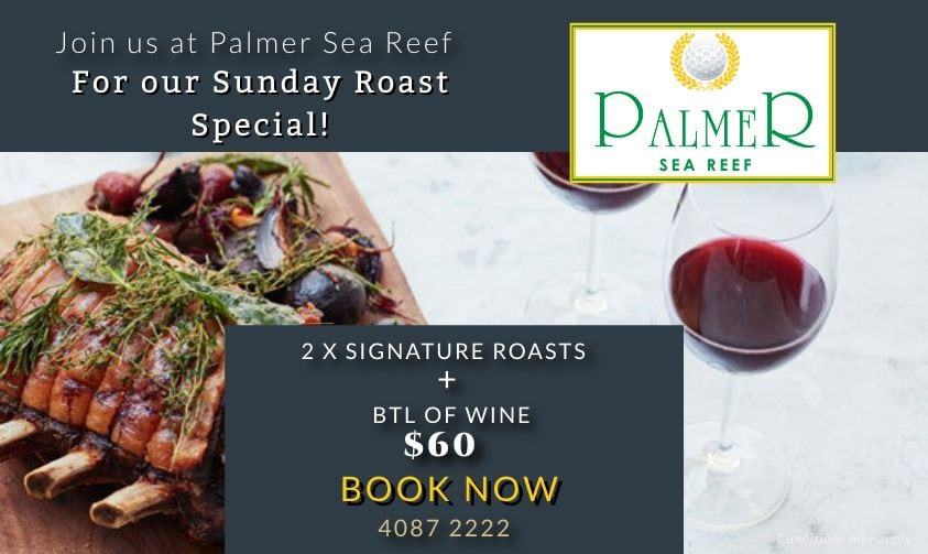palmer sea reef