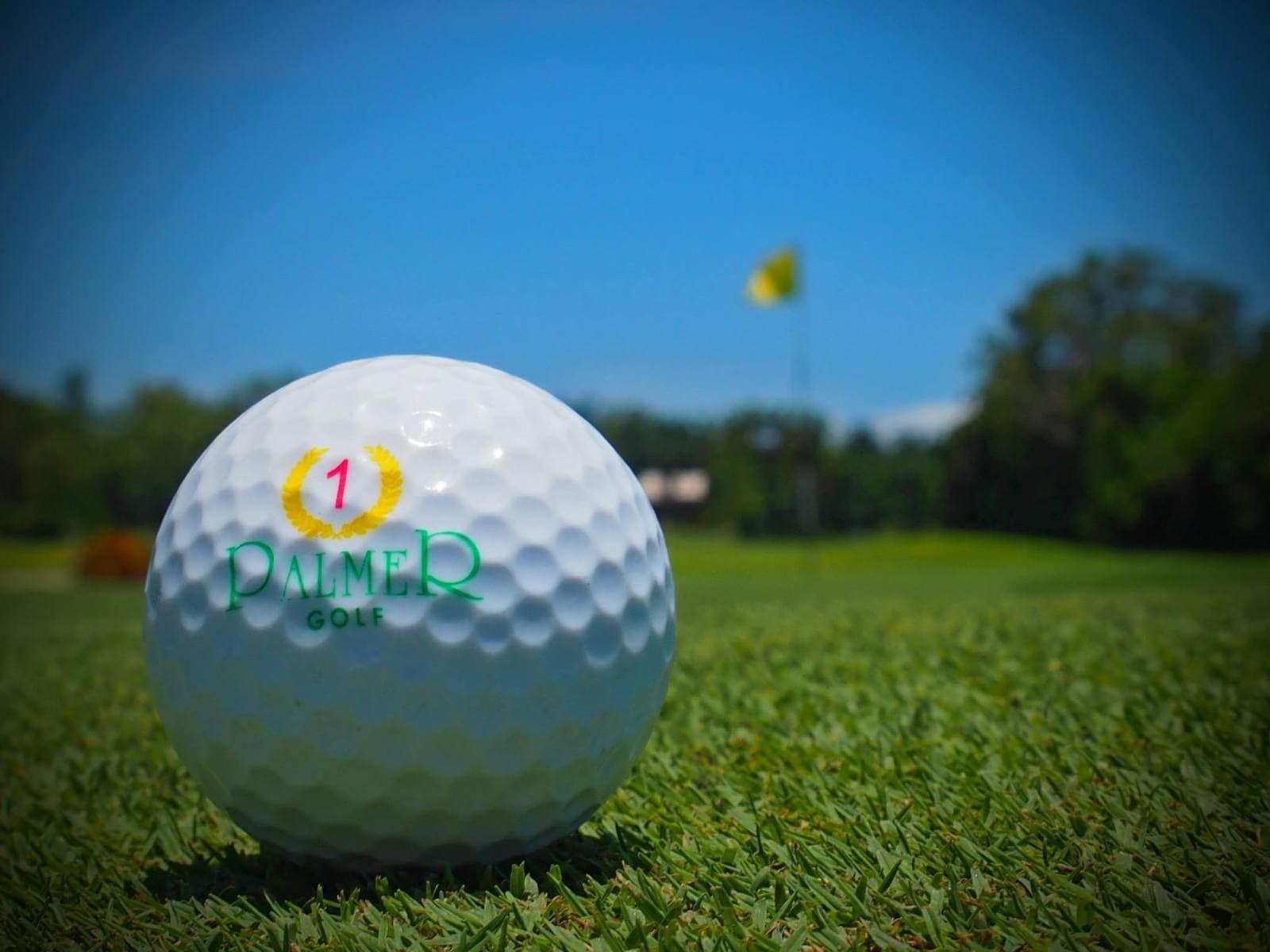 palmer golf
