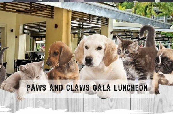 gala-lunch-web-1-768x395